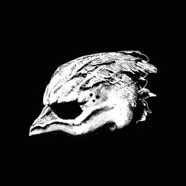 legend-of-the-seagullmen-legend-of-the-seagullmen-recensione